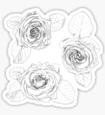 Hand drawn rose isolated on white background.   Sticker