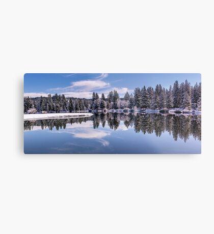 Winter at the Pond  Metal Print