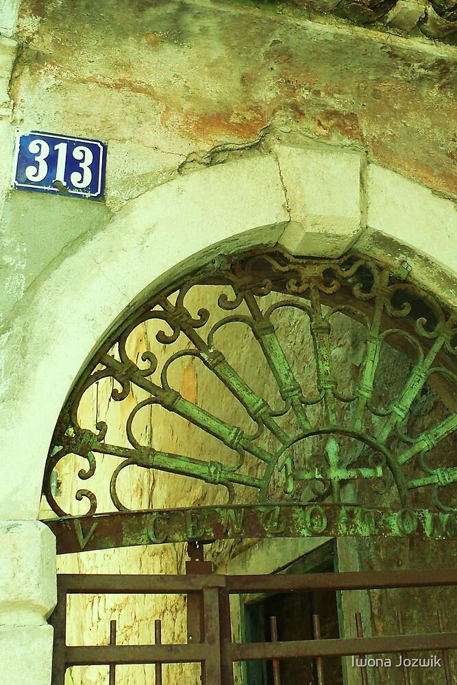 Number 313 by Iwona Jozwik