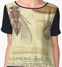 The Queensland Fruit Fly-The Mediterranean Fruit Fly Women's Chiffon Top
