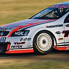 Garth Tander V8 by Paul Mears