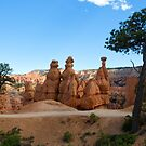 Bryce Canyon National Park by Yair Karelic