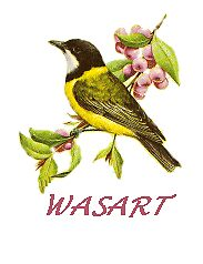 Golden whistler by walter1