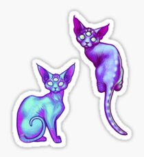 Galacticats sticker pack Sticker