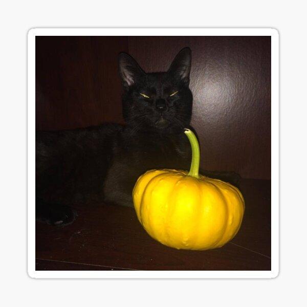 Domino's Halloween Sticker