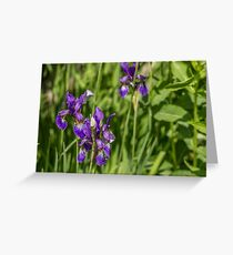 Blue flowers in green Greeting Card