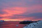 Antarctic Sunset by Robert Elliott