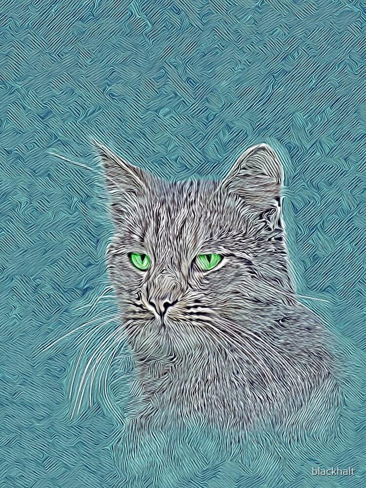 Felis silvestris catus by blackhalt