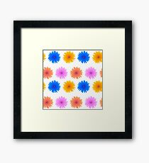 Spring Pink Blue Yellow Flowers Isolated on White Background. Seamless Colorful Flower Pattern Framed Print