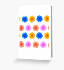 Spring Pink Blue Yellow Flowers Isolated on White Background. Seamless Colorful Flower Pattern Greeting Card