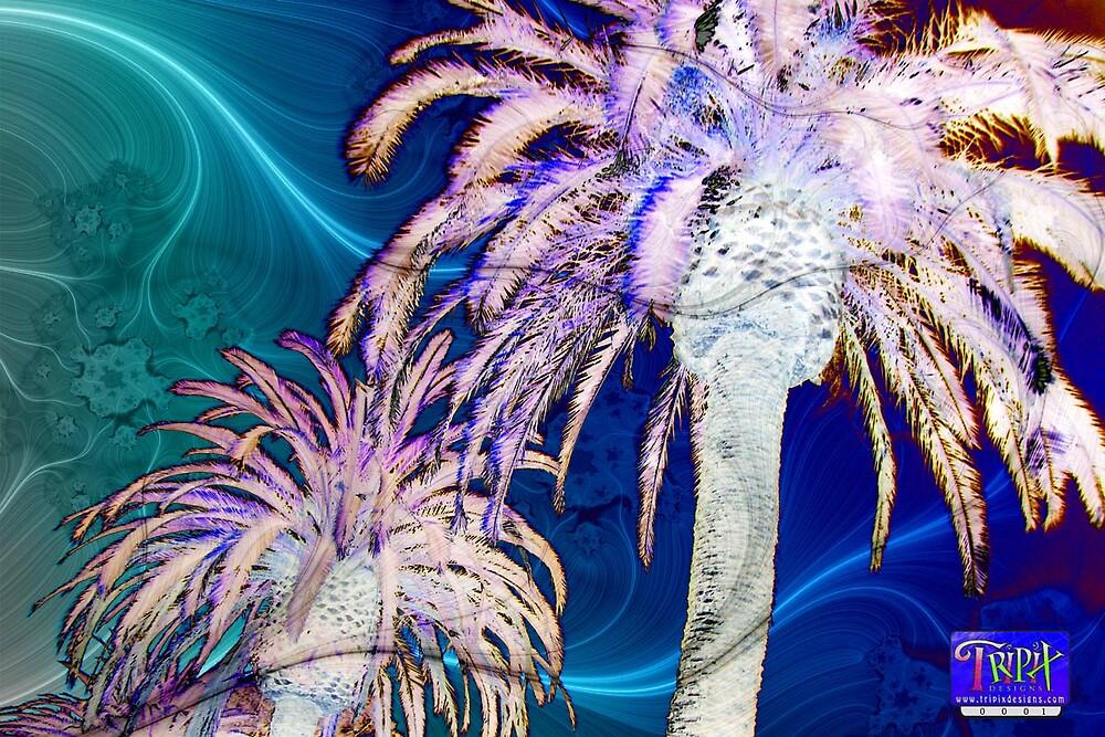 Tripix Design 0001 - The Palm Tree Effect by Tripix Designs