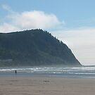 Oregon Coast by CassPics