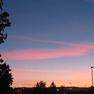 Pink Striped Skies by CassPics