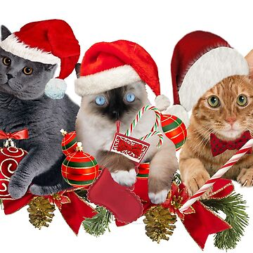 Three Cats Christmas Designs by Friskybizpets