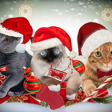 Three Cat  Christmas Designs by Friskybizpets