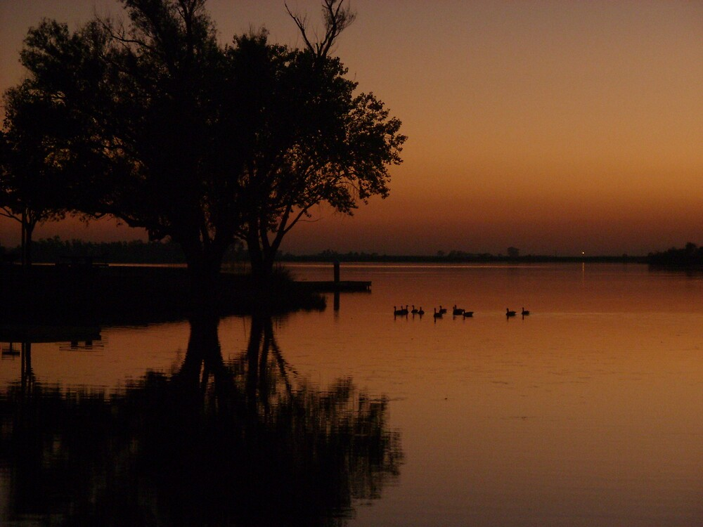 Ducky Evening by Jerry Stewart