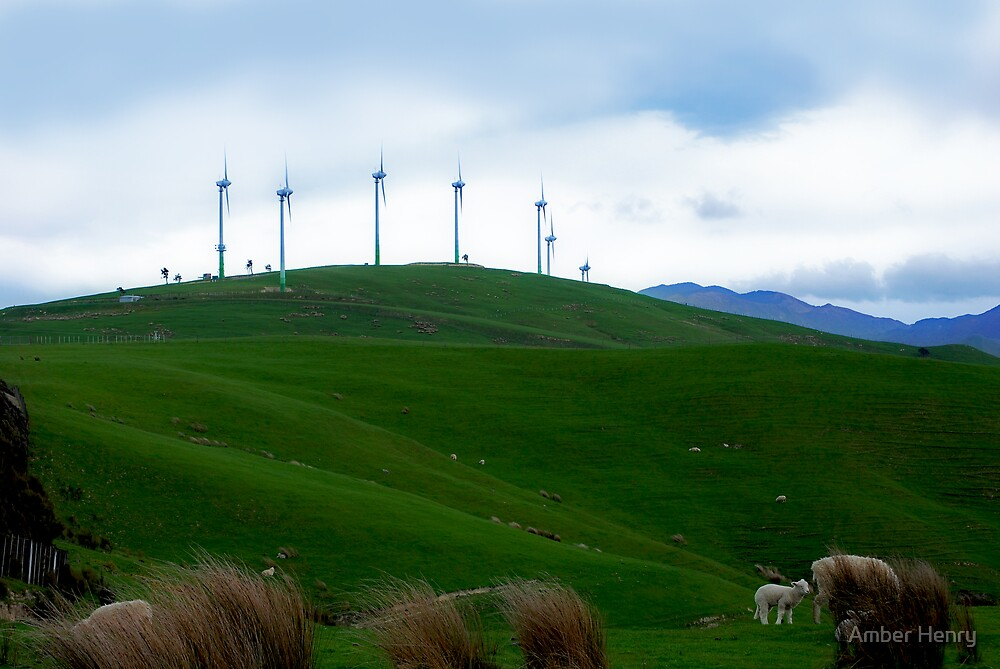 Wind Farm by Amber Henry