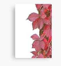 colorful autumn leaf Canvas Print