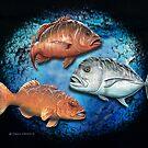 Mixed Reef fish by David Pearce
