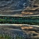 Cook's Pond by BigD