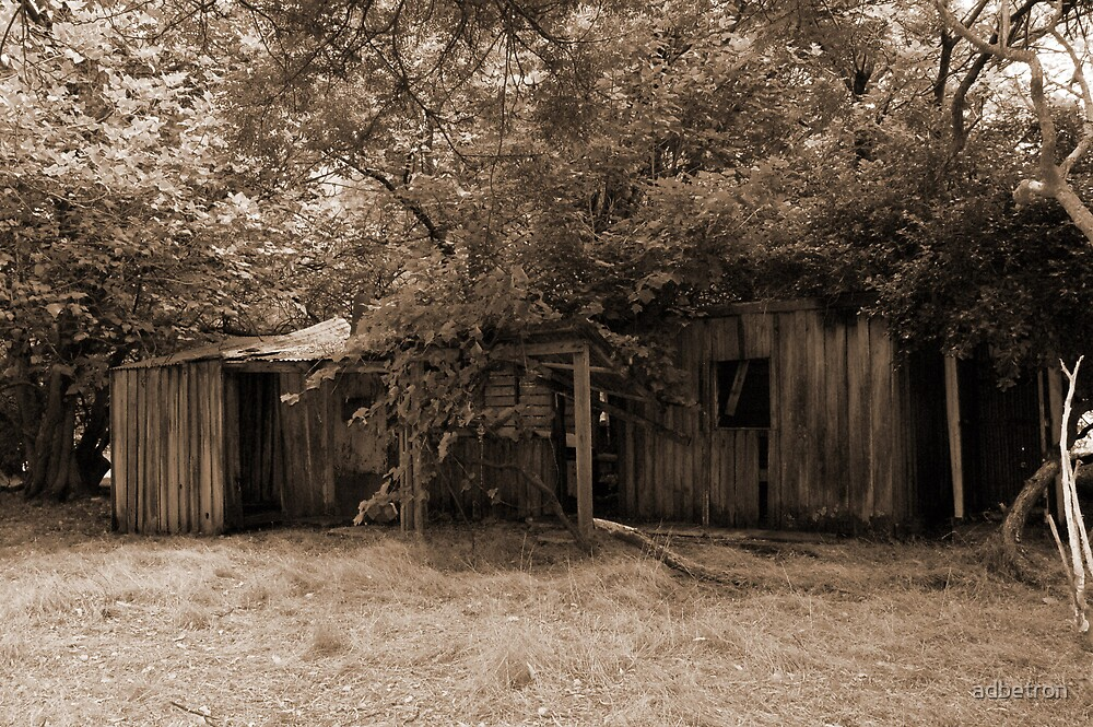 Old House by adbetron