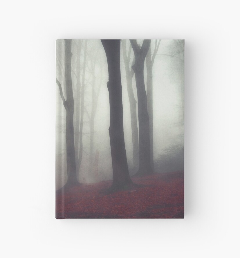 bonds - forest on a fog day in fall by Dirk Wuestenhagen