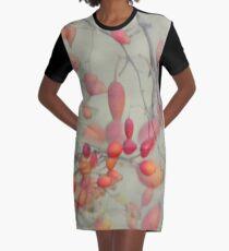 Cinorrodo Graphic T-Shirt Dress
