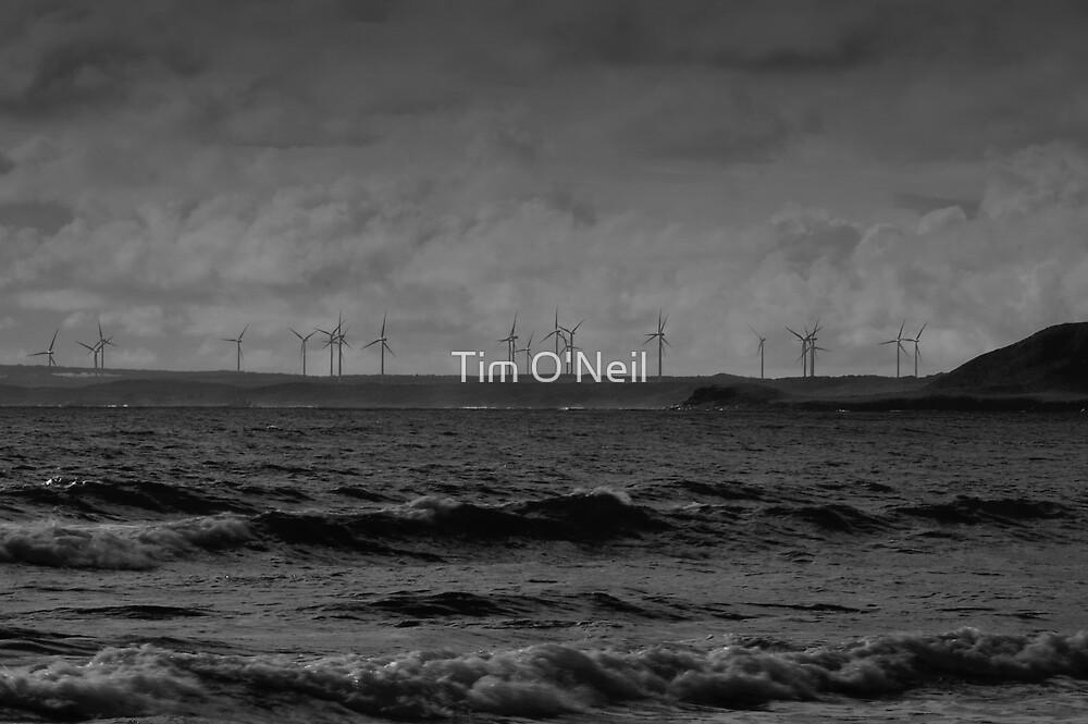 Windfarm by Tim O'Neil