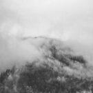 Moody clouds 1 von nurmut