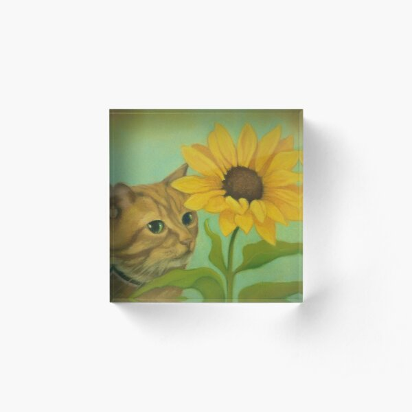 Shy Ginger Cat With Sunflower Acrylic Block