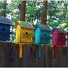 Bird Houses on a Fence by Wayne King