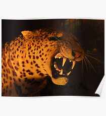 Sabre Toothed Tiger Poster