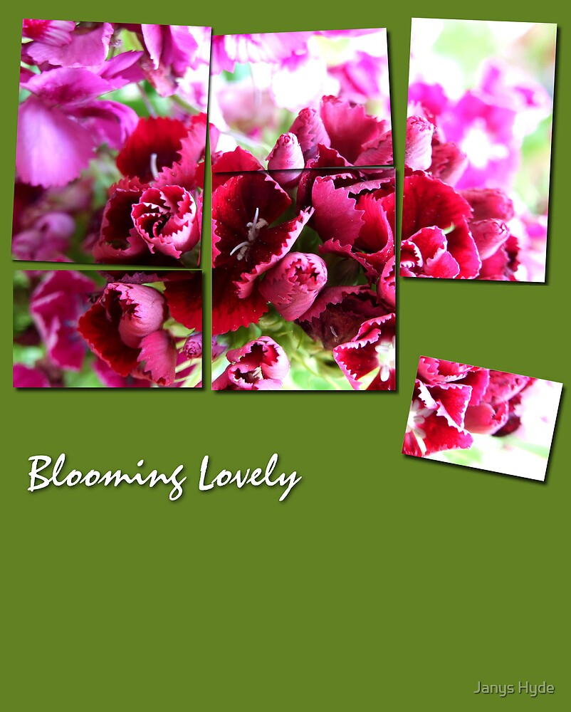 Blooming Lovely Collage by Janys Hyde
