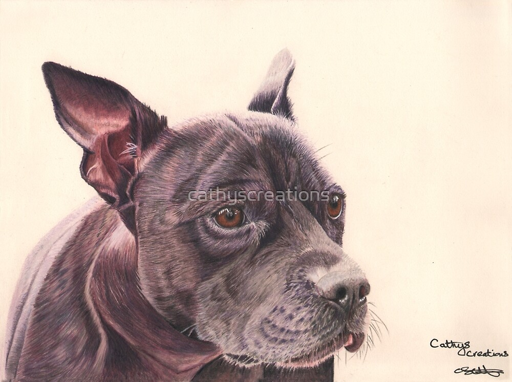 A Staffordshire Bull Terrier by cathyscreations