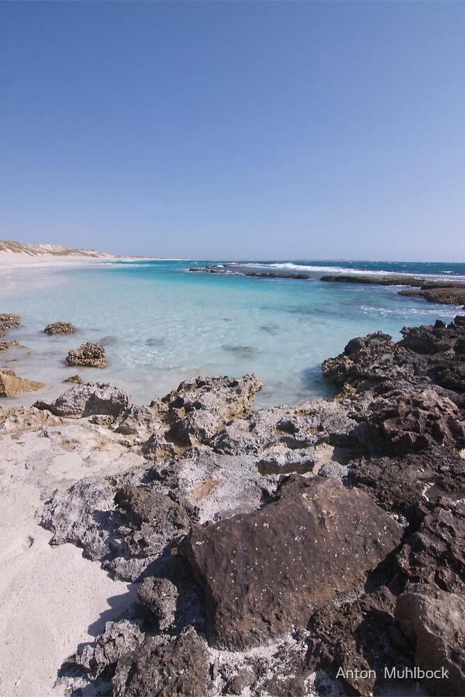 Coral Bay Western Australia by Anton  Muhlbock