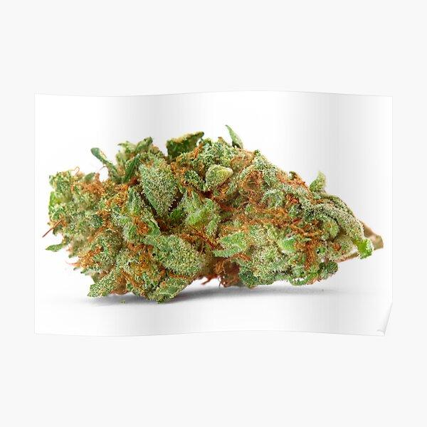 Space Queen Marijuana Poster