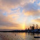 Cold Rainbow by Bente Agerup