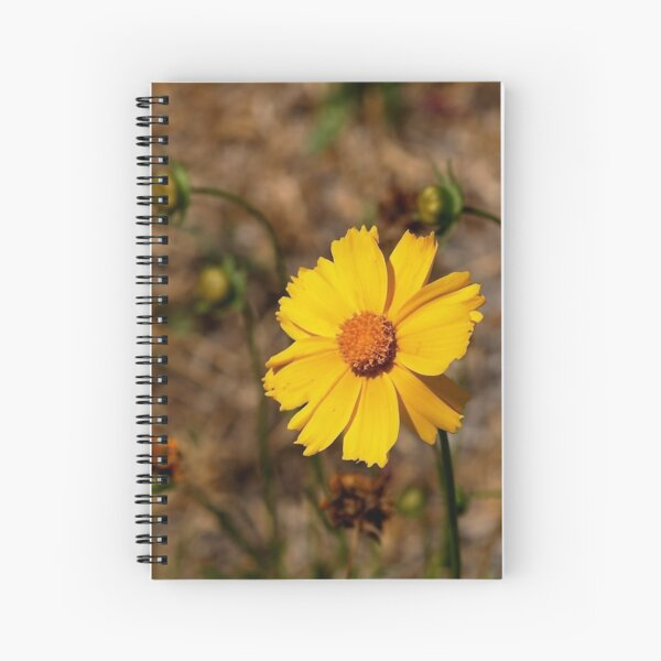 Small Sunflower in Southern California Spiral Notebook