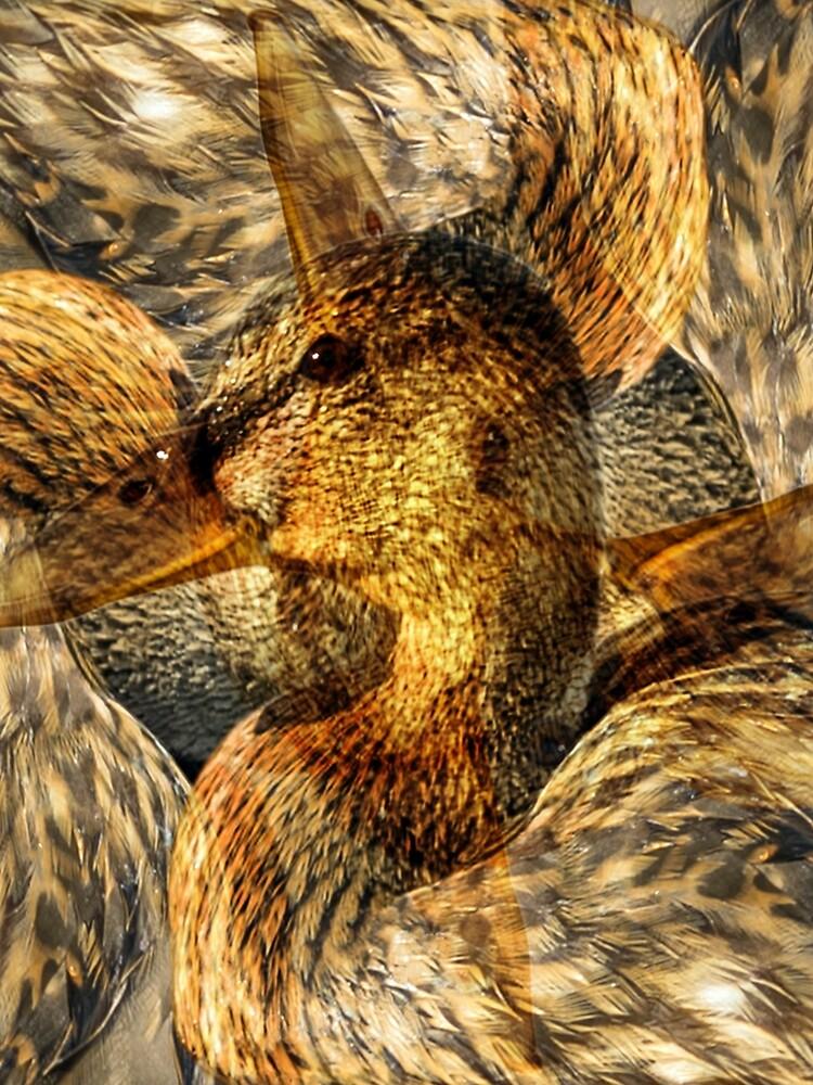 Designs Inspired By Nature: Wild Mallard by AliusImago