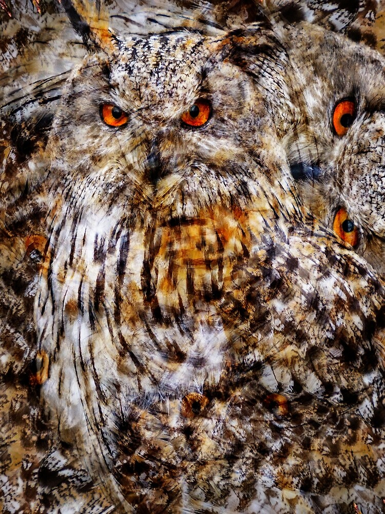 Designs Inspired By Nature: Eagle Owl by AliusImago