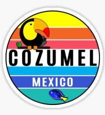 Cozumel Mexico Tropical Beach Toucan Fish Travel Vacation Sticker