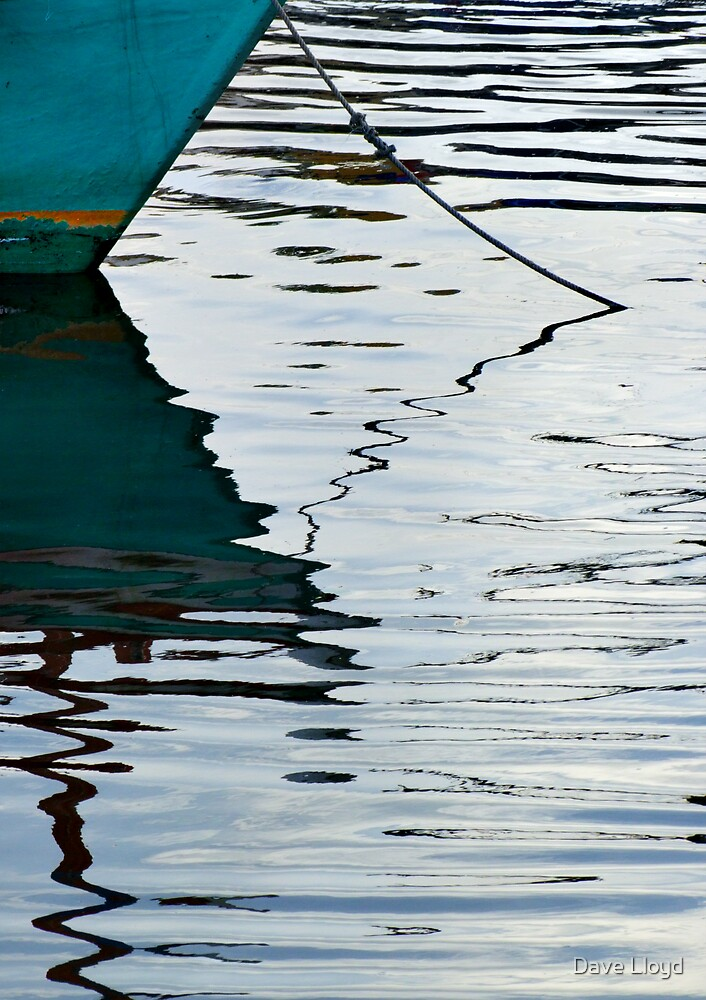 Reflections III by Dave Lloyd