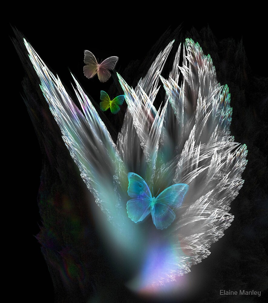 Butterflies are Free  by Elaine Manley