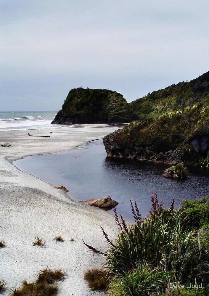 Cool Beach by Dave Lloyd
