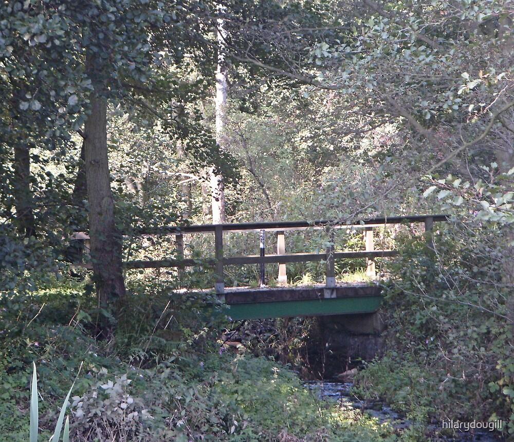Bridge in the sunlight by hilarydougill
