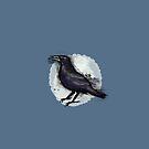 Wild Scottish Raven  by jennyjeffries