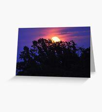 Moonlight and Indigo Greeting Card