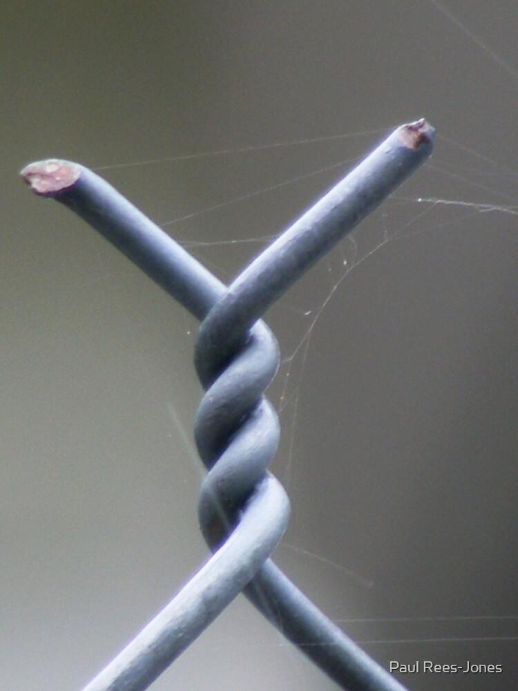 Twisted. by Paul Rees-Jones