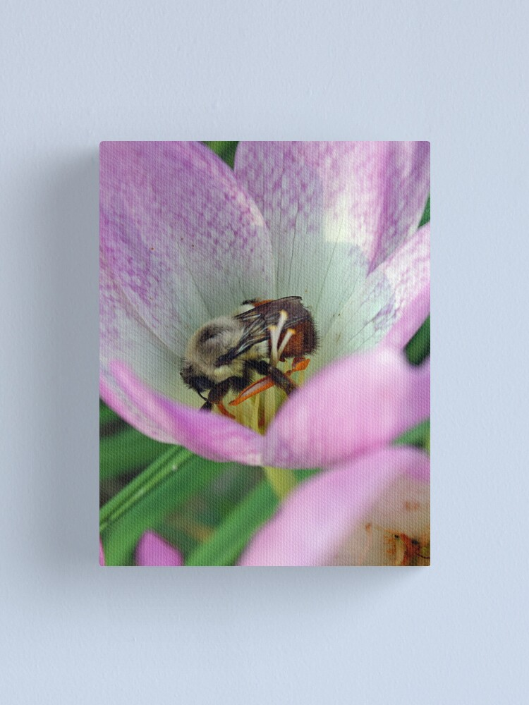Alternate view of An Unexpected Guest Canvas Print