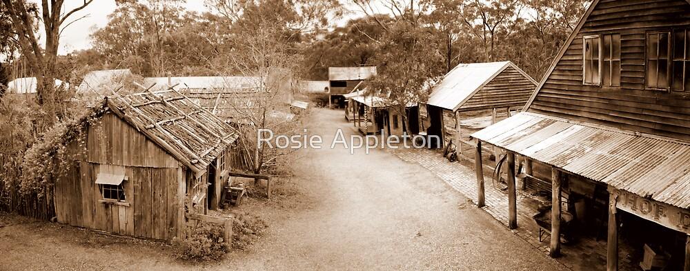 Porcupine Village by Rosie Appleton